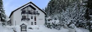 Appartementhaus, Ferienhaus am Titisee im Schwarzwald.